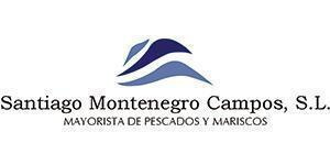 santiago montenegro campos S.L